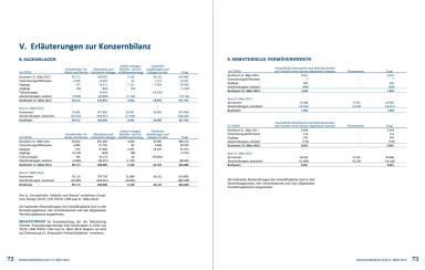 Erläuterungen zur Konzernbilanz