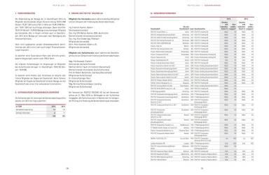 Polytec Geschäftsbericht - Konzernanhang
